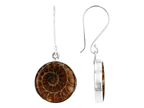 Photo of Artisan Collection Of India™ 20mm Round Ammonite Sterling Silver Dangle Earrings