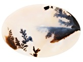 Dendritic Agate 76x52mm Oval Tablet 119.98ct