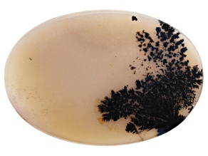 Dendritic Agate 51x35mm Oval Tablet 41.74ct