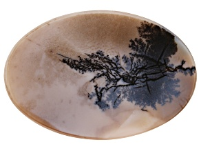 Dendritic Agate 50x33.5mm Oval Tablet 36.26ct