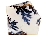 Dendritic Agate 41x38.5mm Irregular Pentagon Shape Tablet 33.55ct