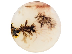 Dendritic Agate 33mm Round Tablet 24.82ct