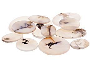 Dendritic Agate Mixed Shape Tablet Set of 12 120.21ctw