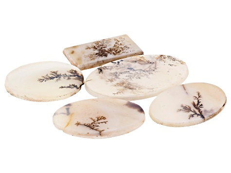 Dendritic Agate Mixed Shape Tablet Set of 5 83.26ctw
