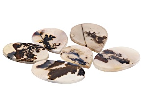 Dendritic Agate Mixed Shape Tablet Set of 6 112.06ctw