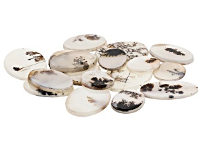 Dendritic Agate Mixed Shape Tablet Set of 16 138.18ctw
