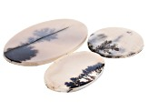 Dendritic Agate Mixed Shape Tablet Set of 3 76.54ctw