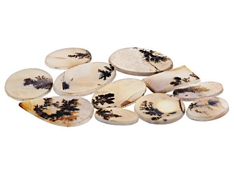 Dendritic Agate Mixed Shape Tablet Set of 11 109.39ctw