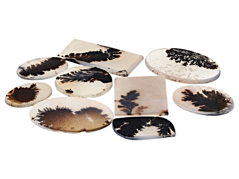 Dendritic Agate Mixed Shape Tablet Set of 9 106.14ctw