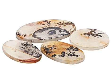 Dendritic Agate Mixed Shape Tablet Set of 4 92.79ctw