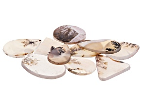 Dendritic Agate Mixed Shape Tablet Set of 10 101.66ctw