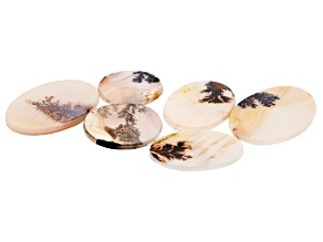 Dendritic Agate Mixed Shape Tablet Set of 6 67.73ctw