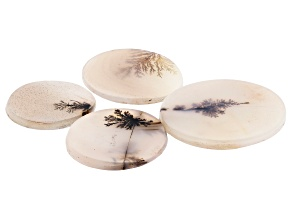 Dendritic Agate Round Tablet Set of 4 65.83ctw