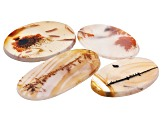 Dendritic Agate Oval Tablet Set of 4 93.97ctw