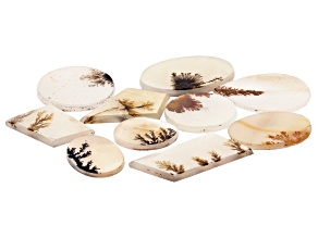 Dendritic Agate Mixed Shape Tablet Set of 10 86.43ctw