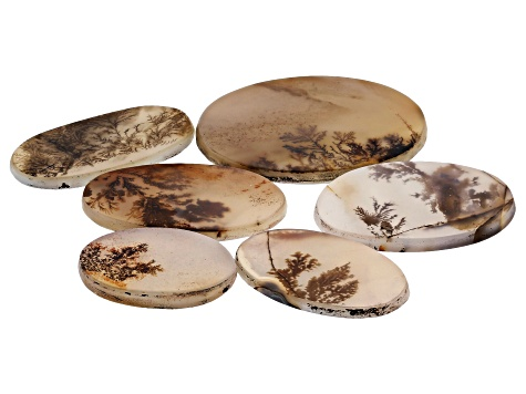Dendritic Agate Oval Tablet Set of 6 68.37ctw
