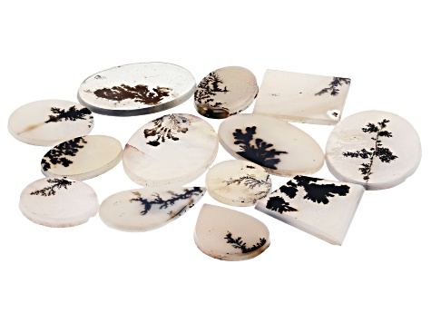 Dendritic Agate Mixed Shape Tablet Set of 13 94.74ctw
