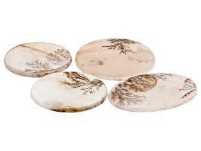 Dendritic Agate Mixed Shape Tablet Set of 4 61.69ctw