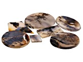 Dendritic Agate Mixed Shape Tablet Set of 7 103.61ctw