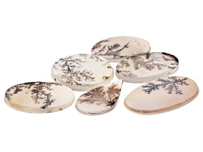 Dendritic Agate Mixed Shape Tablet Set of 6 50.13ctw