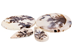 Dendritic Agate Mixed Shape Tablet Set of 4 53.02ctw