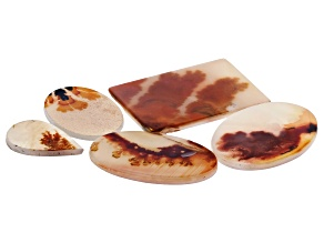Dendritic Agate Mixed Shape Tablet Set of 5 89.28ctw