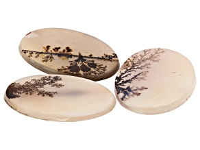 Dendritic Agate Oval Tablet Set of 3 59.07ctw