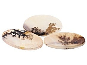 Dendritic Agate Mixed Shape Tablet Set of 3 58.93ctw
