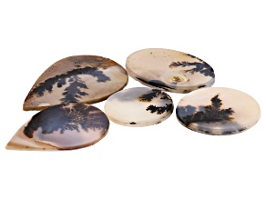 Dendritic Agate Mixed Shape Tablet Set of 5 63.04ctw