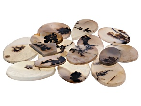 Dendritic Agate Mixed Shape Tablet Set of 15 163.22ctw