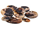 Dendritic Agate Round and Oval Tablet Set of 11 166.86ctw