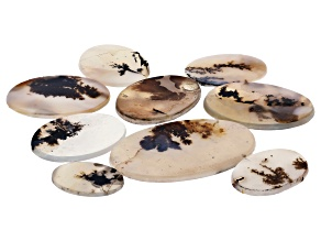 Dendritic Agate Round and Oval Tablet Set of 9 145.87ctw