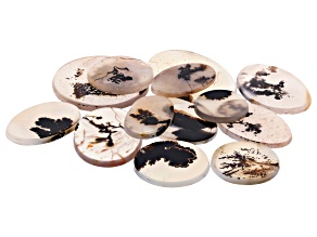 Dendritic Agate Round and Oval Tablet Set of 13 173.39ctw