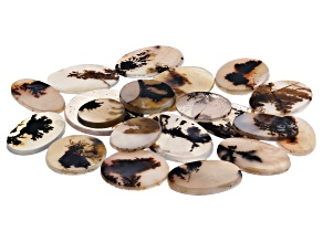 Dendritic Agate Round and Oval Tablet Set of 20 145.64ctw