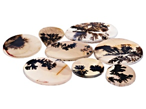 Dendritic Agate Mixed Shape Tablet Set of 8 112.68ctw