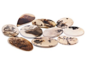 Dendritic Agate Mixed Shape Tablet Set of 10 142.46ctw