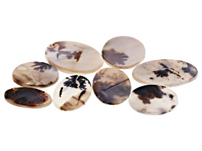 Dendritic Agate Oval and Round Tablet Set of 8 110.84ctw