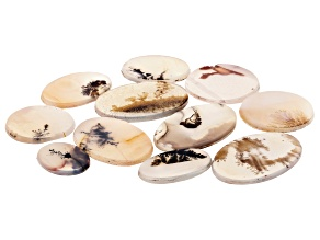 Dendritic Agate Oval and Round Tablet Set of 11 133.36ctw