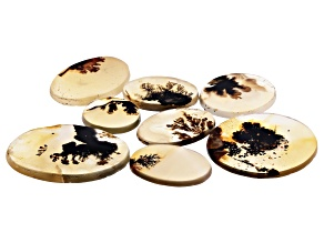Dendritic Agate Oval and Round Tablet Set of 8 83.17ctw