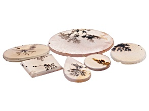 Dendritic Agate Mixed Shape Tablet Set of 6 56.64ctw