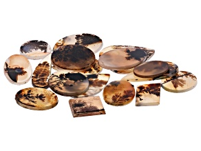 Dendritic Agate Mixed Shape Tablet Set of 17 106.95ctw