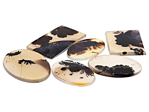 Dendritic Agate Rectangle and Round Tablet Set of 6 116.79ctw