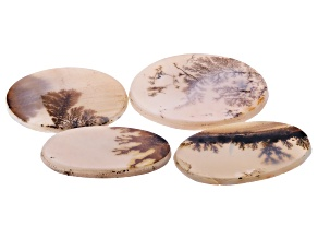 Dendritic Agate Oval and Round Cabochon Set of 4 67.11ctw