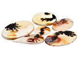 Dendritic Agate Mixed Shape Cabochon Set of 6 66.83ctw