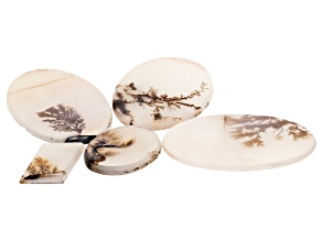 Dendritic Agate Mixed Shape Cabochon Set of 5 55.77ctw