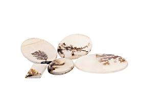Dendritic Agate Mixed Shape Cabochon Set of 5 55.77ctw