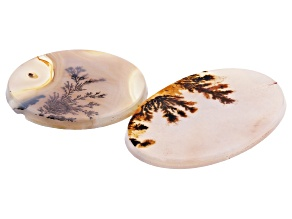 Dendritic Agate Oval and Round Cabochon Set of 2 45.67ctw