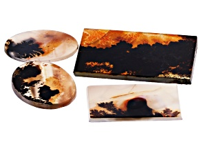 Dendritic Agate Rectangle and Round Cabochon Set of 4 75.69ctw
