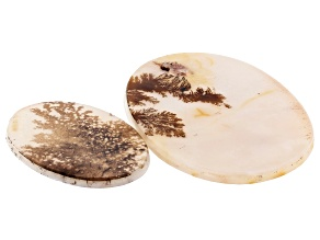 Dendritic Agate Oval Cabochon Set of 2 49.19ctw