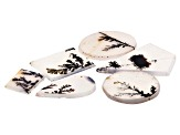 Dendritic Agate Mixed Shape Cabochon Set of 6 29.87ctw